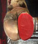 taco para casco de bovino / em borracha