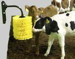 cepillo para la ganadería