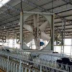 ventilateur pour bâtiment d'élevage / de circulation d'air / suspendu