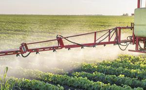 Crop protection & maintenance