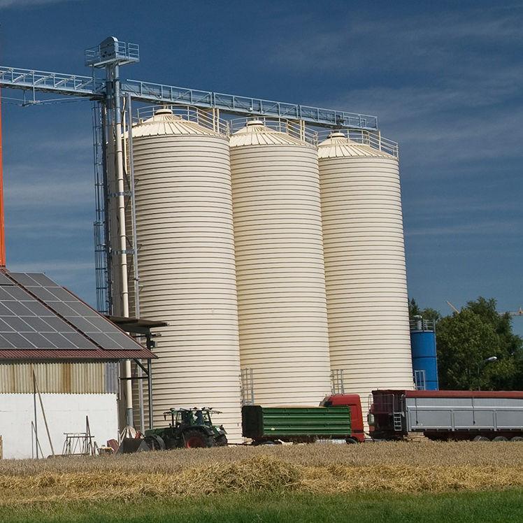 Grain silo / for animal feed / stainless steel / round - Lipp GmbH