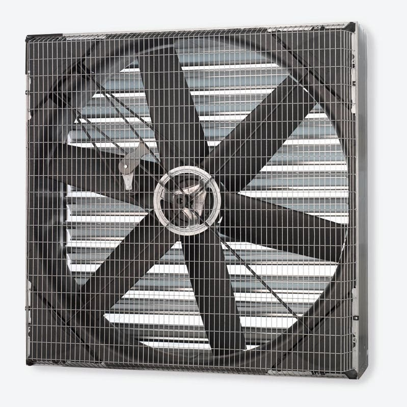 Fan for livestock buildings / for air circulation / wall-mounted