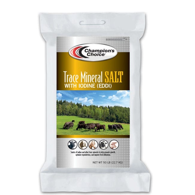 Animal feed supplement / beef cattle / pig / goat - Trace