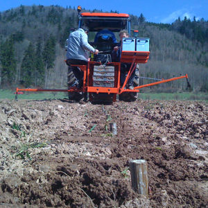 willow transplanter / automatic / 1-row / towed