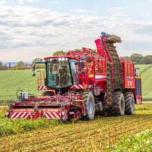 beet harvester / self-propelled / multi-row / six-row