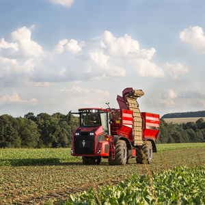 beet harvester / self-propelled