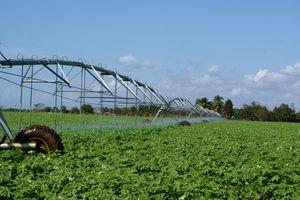 center irrigation pivot
