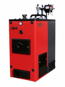 biomass boiler / solid fuel / wood / pellet