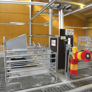 cattle feed station / with management software / automatic identification system / programmable