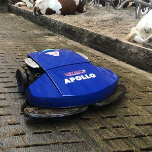 robotic manure scraper / straight / for slatted floors / electrically-powered