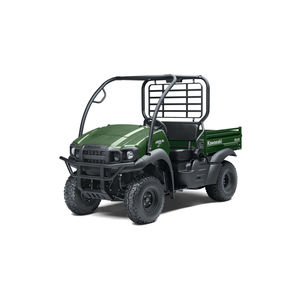 4x4 side-by-side vehicle / 2WD / 2-person