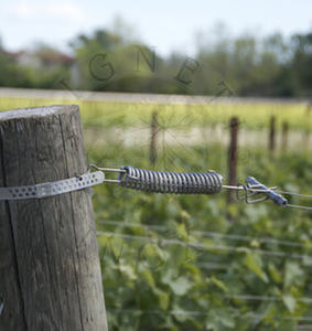 spring wire strainer