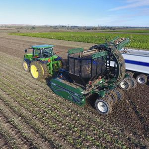 sugar beet harvester / trailed
