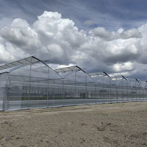 multi span greenhouse / commercial production / glass / plastic