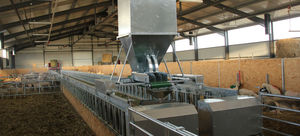 goat manual feeding system / sheep / hopper / programmable