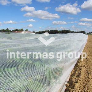wind netting / anti-bird / hail / insect