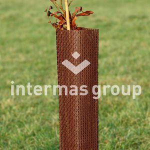 vineyard grow tube