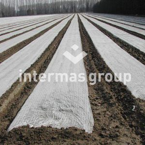 weed control film / perforated
