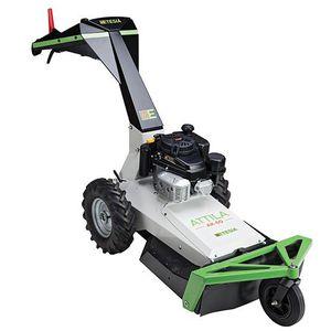 push lawn-mower