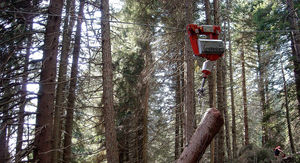 forestry hoist carriage / for cable transport