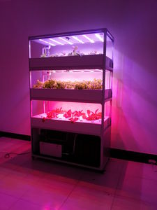 greenhouse light / for germination chambers / LED / red