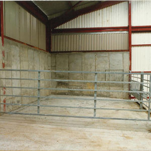livestock dividing panel / cattle / metal