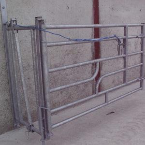 livestock gate / stable / for cows / for calves