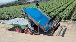 spinach harvester / lettuce / herb / self-propelled