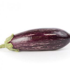 hybrid aubergine seeds