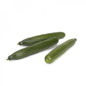 Ccu cucumber seeds / spring / hybrid