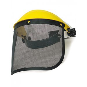 stainless steel protective visor