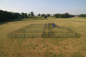 livestock gate / corral / for cows / metal
