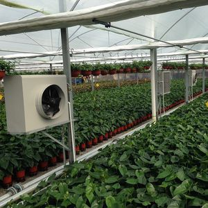 hot water boiler / for greenhouse