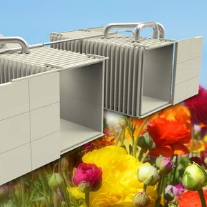 vegetable cooler / for flowers / vacuum