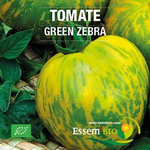 yellow tomato seeds / green / early / round