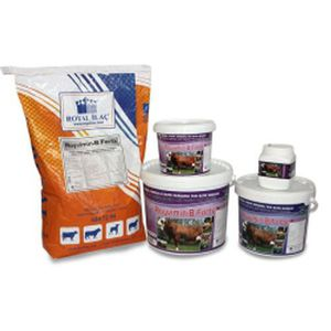 animal feed supplement / calf / beef cattle / sheep