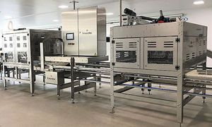 hatching egg egg transfer system / automatic