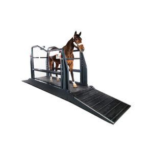 walk equine treadmill