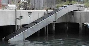 belt fish elevator / carp / steel