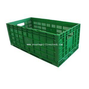 transport egg box