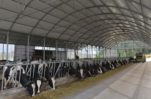livestock warehouse