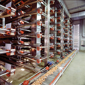vertical collector egg collection system