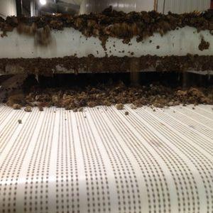 manure dryer / stationary