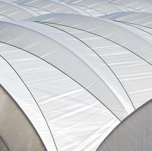 multi-tunnel greenhouse
