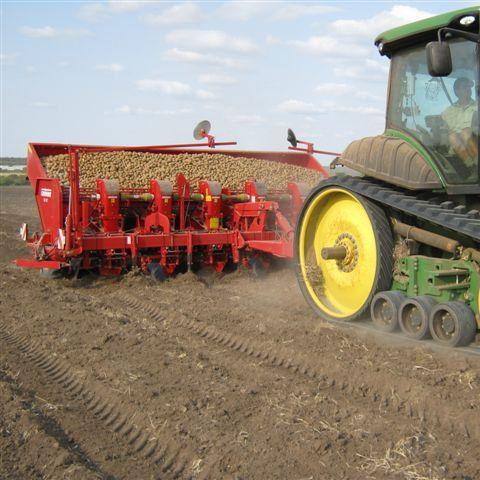 potato planter / automatic / 6-row / towed