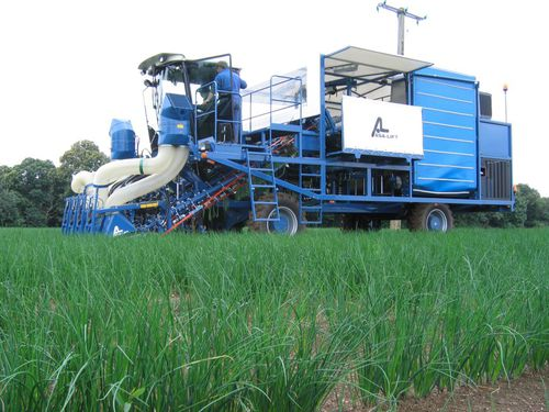 chive harvester / self-propelled / 4-row