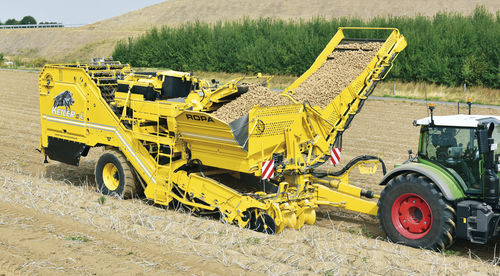 potato harvester / trailed / 2-row