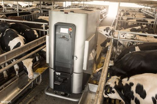 calf feed dispenser / robotic / self-propelled / programmable