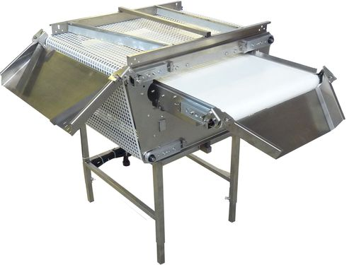 fruit sorter / automatic