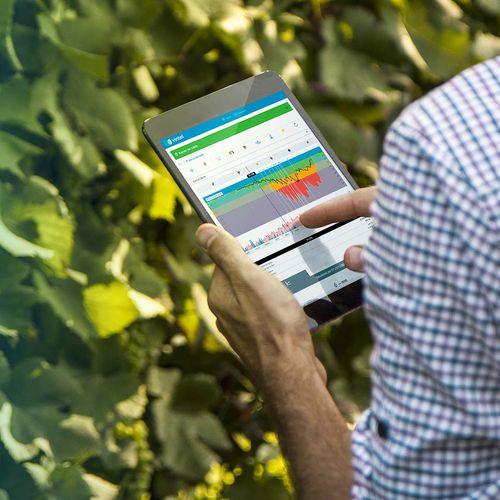 vineyard software / management